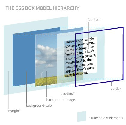 The CSS Box Model Hierarchy