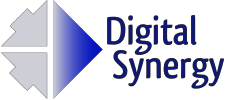 Digital Synergy incorporated Logo